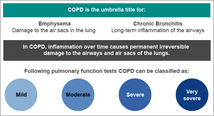 COPD is the umbrella term for emphysema and chronic bronchitis