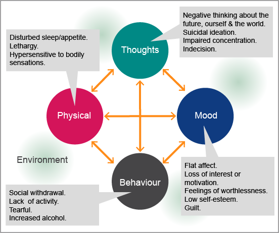 What is depression?: Thoughts, Mood, Behaviour, Physical and Environment